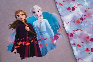 Bilde av Disney Jersey med Frost Frozen Anna, Elsa, panel